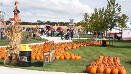 Didier Farms Pumpkinfest
